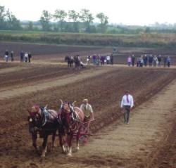 ploughing_1.jpg